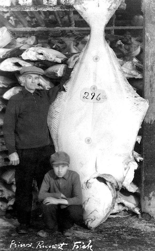 princerupertfish120-2